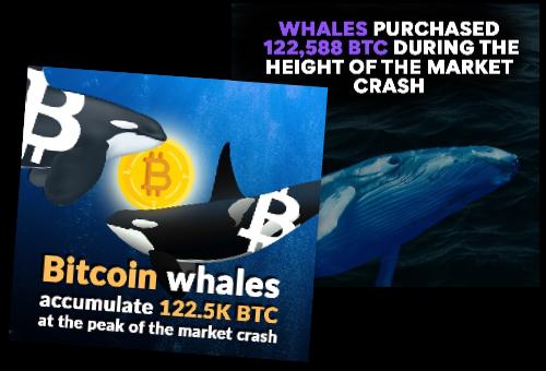 Image - Market